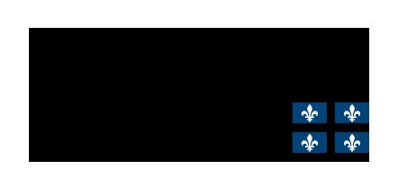 Logo CISSS